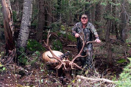 Shea-Robinson 373 7x8 gila archery